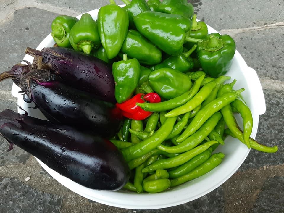 ぽかぽか農園でとれた無農薬・無肥料の健康野菜