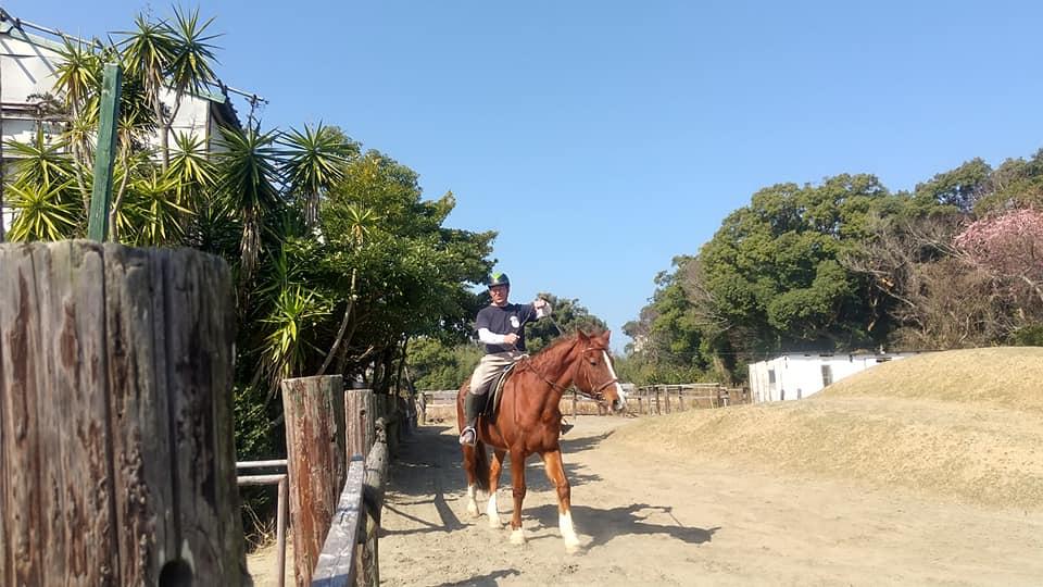 """海辺のゲストハウス""""ぽかぽか""""から歩いて5分の乗馬クラブで乗馬体験"""